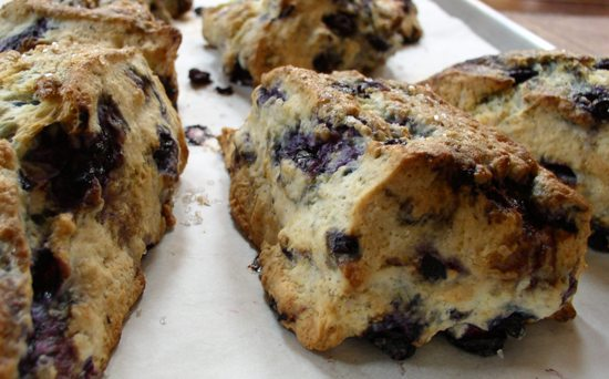 Fresh Blueberry Scone